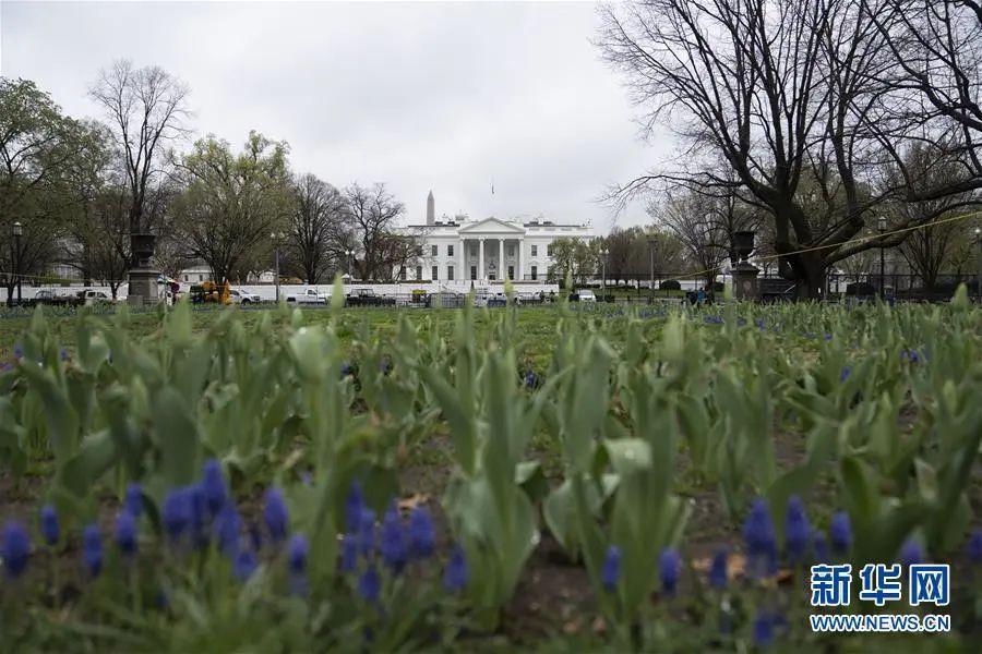 ▲资料图片:美国首都华盛顿白宫(新华社记者 刘杰 摄)