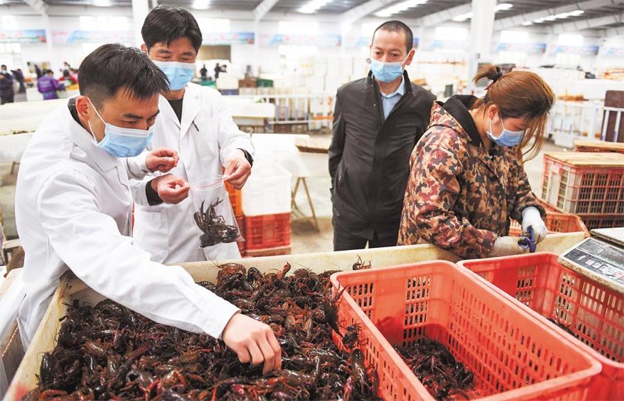 日本确诊新冠肺炎病例达850人,专家:今后一两周是关键