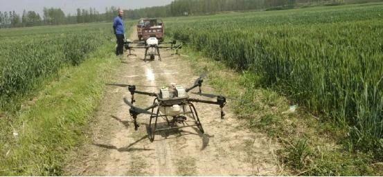 驻马店13架无人机飞防作业,防治小麦赤霉病