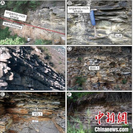 研究区域代表岩性和定年层位照片。南古所 供图