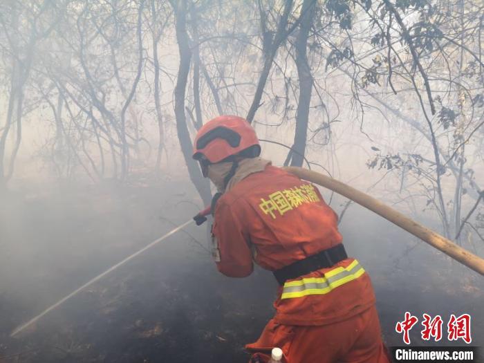 图为森林消防在火场灭火。云南森林消防总队供图