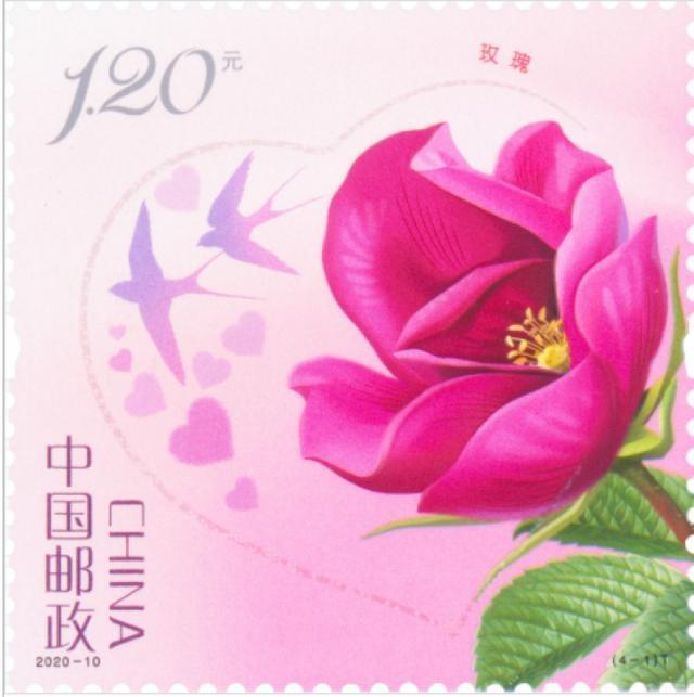 5月20日起发行《玫瑰》邮票  中国邮政为你的爱情添砖加瓦