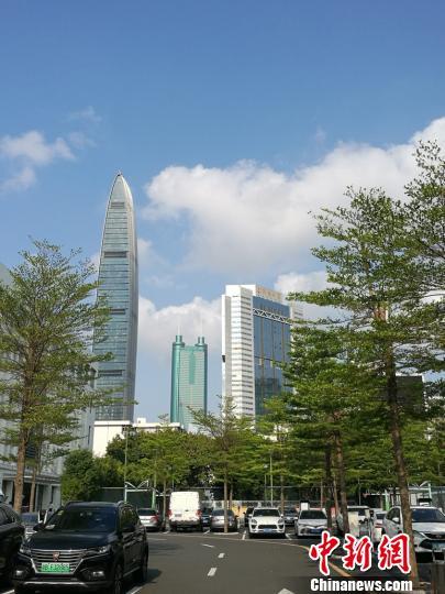 资料图:深圳街景。 郑小红 摄
