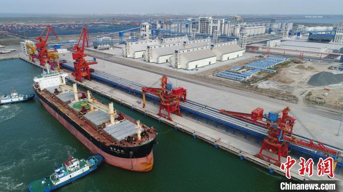 1年累计接卸进口大豆船41艘。中储粮 供图