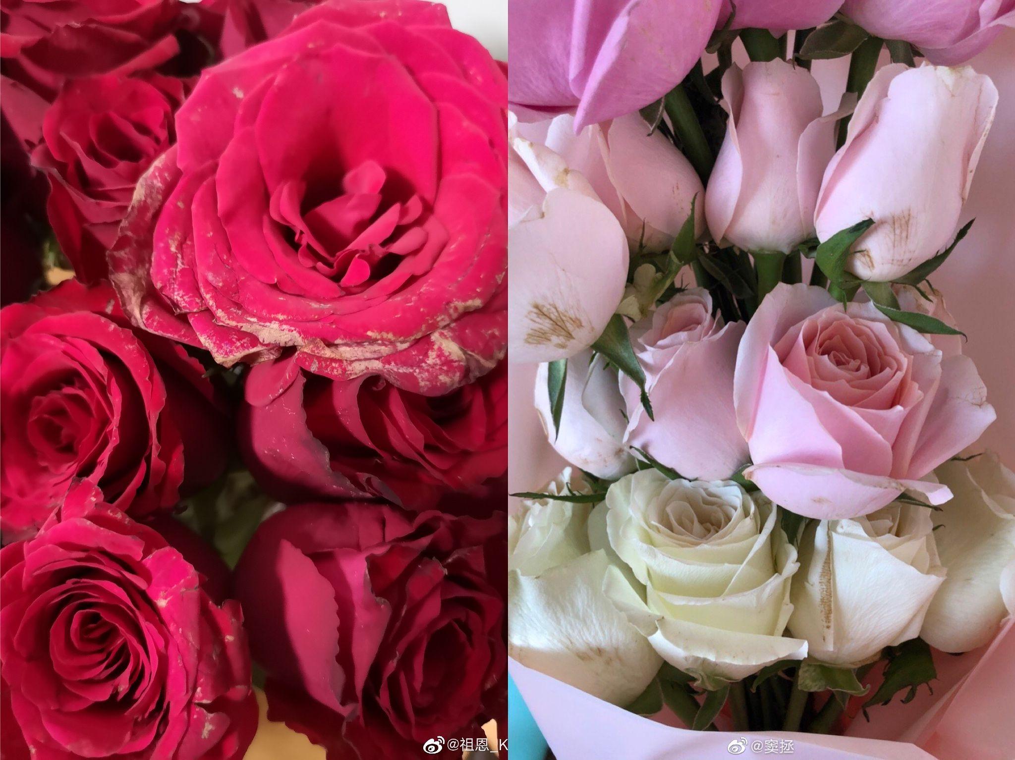 罗永浩直播带货翻车:玫瑰发蔫被投诉 道歉+双倍返现