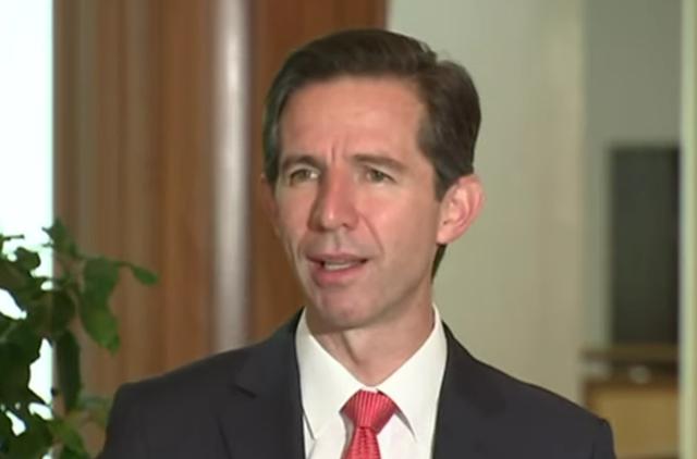 澳大利亚贸易部长西蒙·伯明翰 视频截图