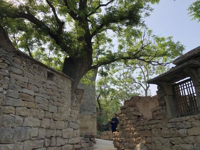 这里是山东|济南长清这个叫五眼井的山村,一听名字就觉得有故事