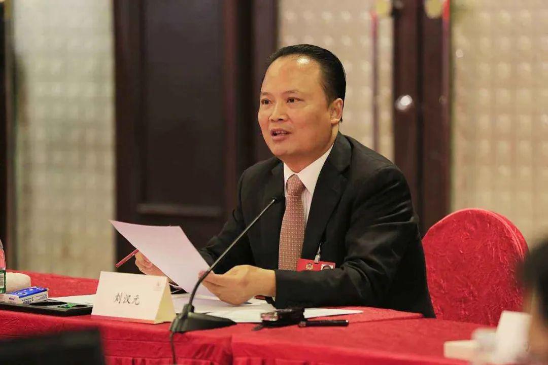 刘汉元:做好光伏发电企业的减税、退税工作