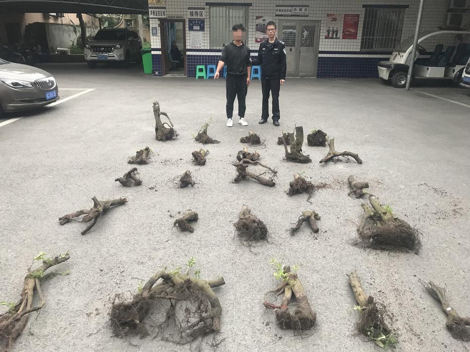 """嫌疑人蒋某指认盗窃的""""金弹子。 本文图片江津区公安局"""