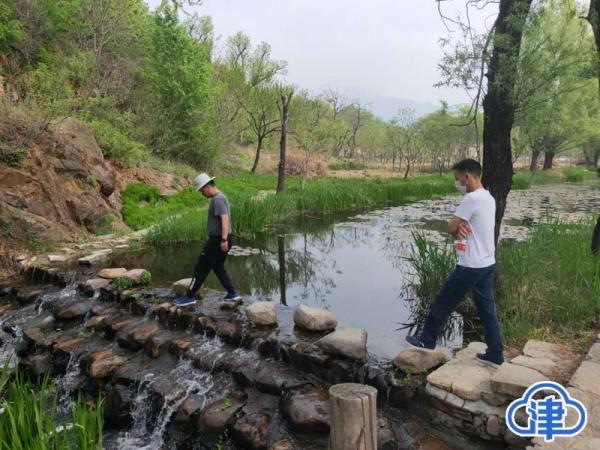 小长假首日蓟州区客流平稳 盘山景区游客近万 农家院提前预定不断