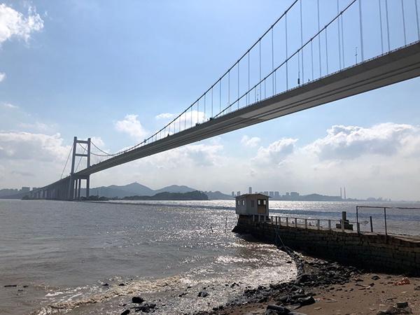6日下午,在虎门大桥底下眺望,肉眼看不出桥体有振动。