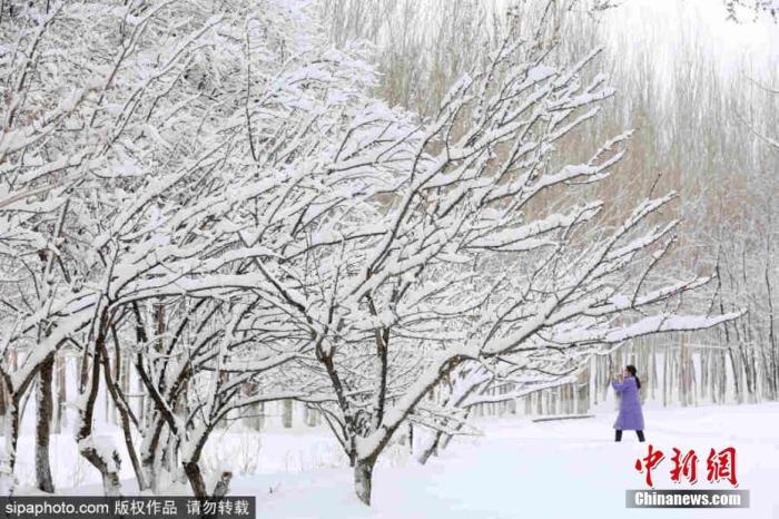 原料图:暴雪天气。图片来源:Sipaphoto 版权作品 不准转载