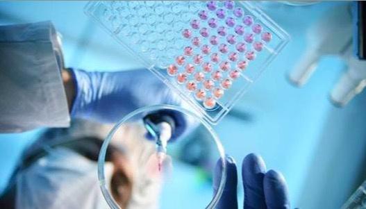 端午假期门急诊安排:北京部分医院核酸检测已约满插图