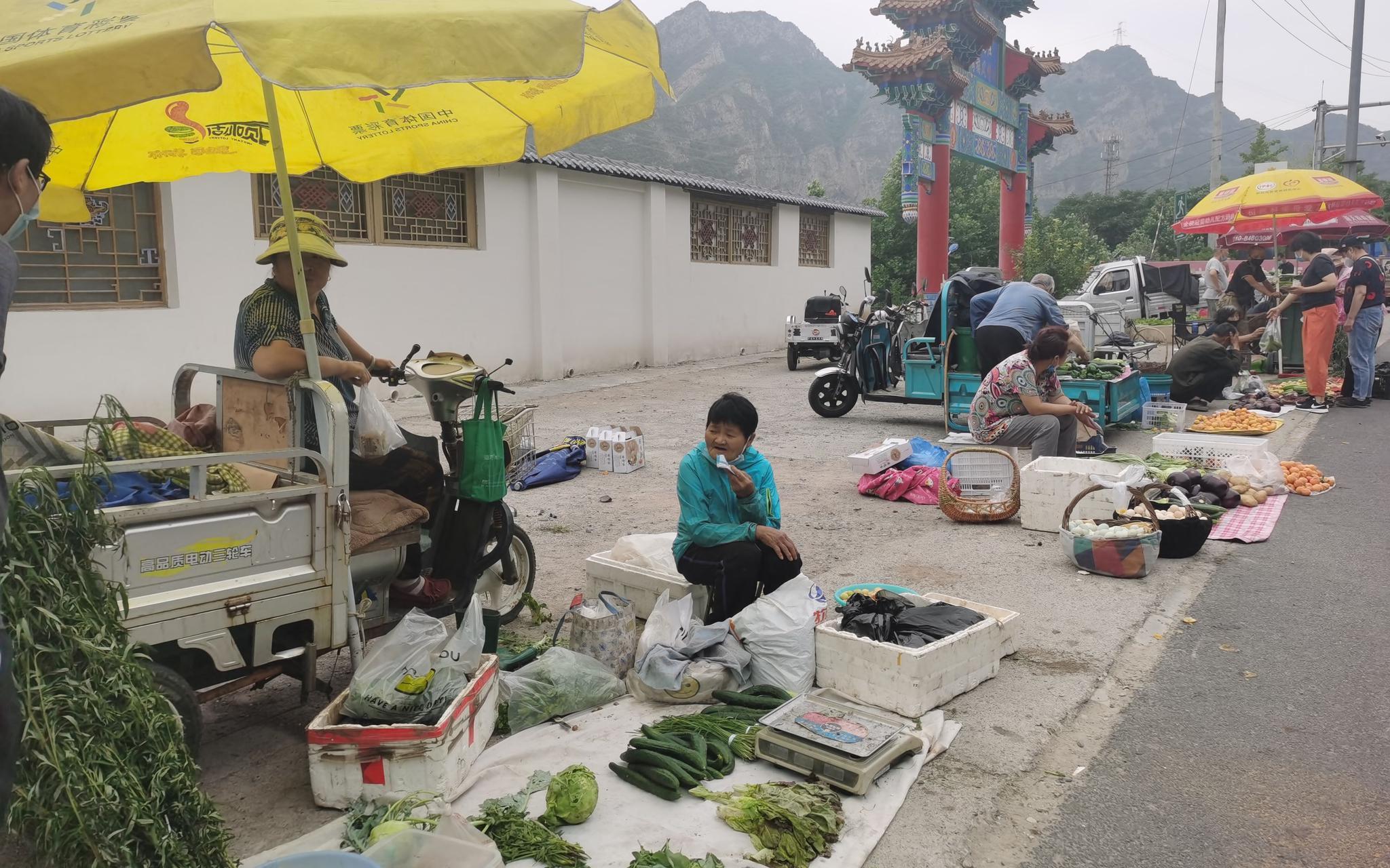端午这几天,还有村民卖艾草。新京报记者 王颖 摄