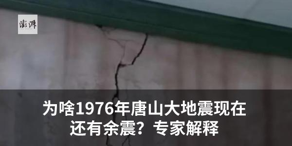鲜花5CBC16-516
