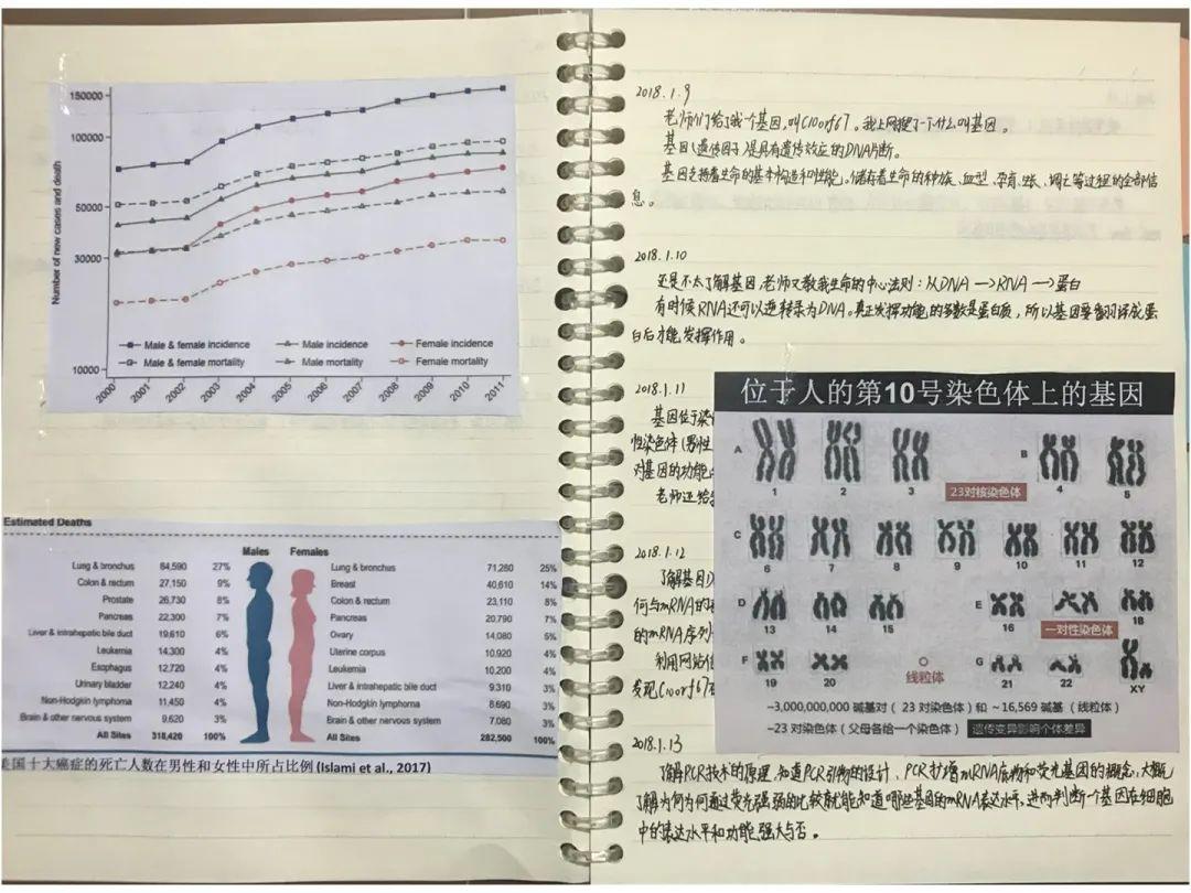 书刊纸6DB-612