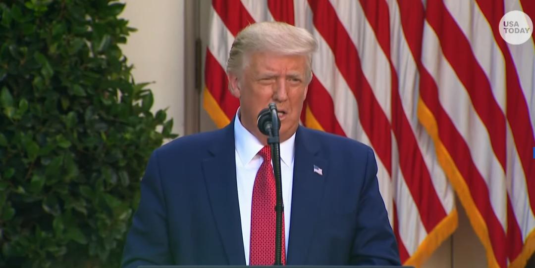 特朗普在白宫玫瑰园说话/视频截图