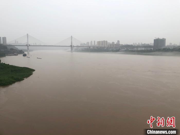 图为受降雨影响,长江重庆主城段河水赓续上涨。 刘相琳 摄