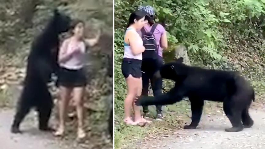 女子路遇野生黑熊被抱住淡定自拍 那个自个跑一边的注意到没