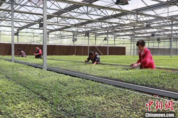 山西省襄垣县探索了多种产业支持模式