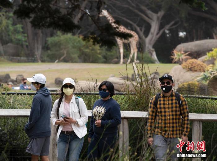 当地时间7月13日,游客在美国加利福尼亚州旧金山动物园参观。当日,这家动物园在关闭近四个月后重新开放。两岁以上的游客需佩戴口罩。 中新社记者 刘关关 摄