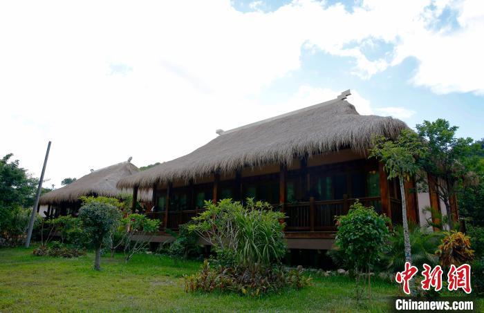 图为王下乡的第一所民宿,由几座装配式船型屋组成。 记者王晓斌 摄