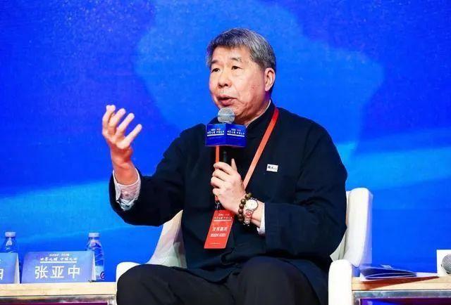 张亚中在环球时报年会上发言
