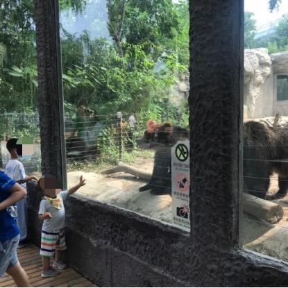 北京动物园溪流景观设警示牌 游客投喂屡禁不止