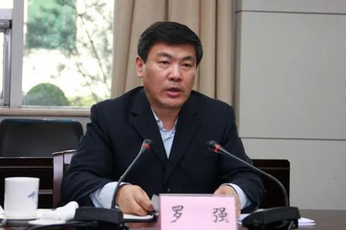 四川,同日任命2副省长