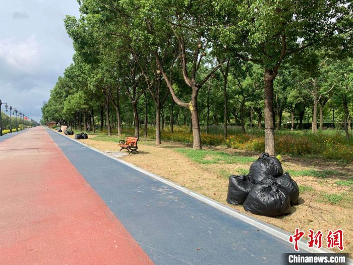 图为汉口江滩公园 武一力 摄