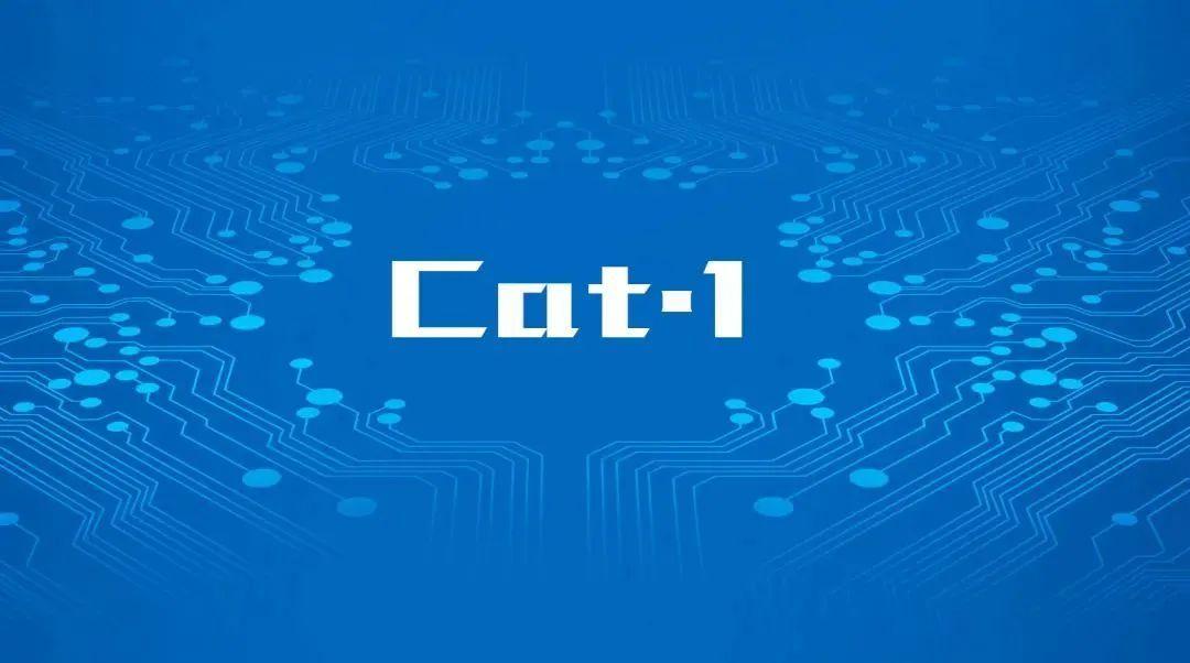 Cat.1大器晚成,物联网时代将担大任