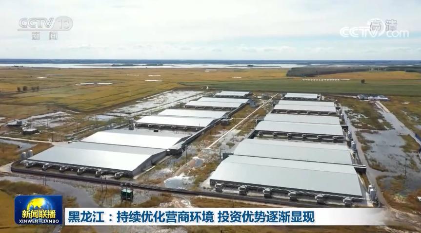 黑龙江:持续优化营商环境 投资优势逐渐显现图片