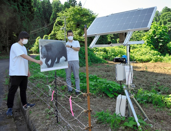 设计者在用熊的照片测试传感器。(图片来源:日本《朝日新闻》网站)
