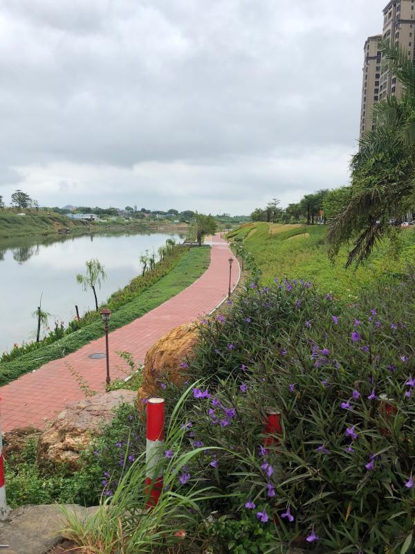 惠州惠东:加强水利项目建设,加大水土执法巡查