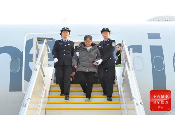 """潜逃海外13年的""""百名红通人员""""头号嫌犯杨秀珠(中)回国投案。"""