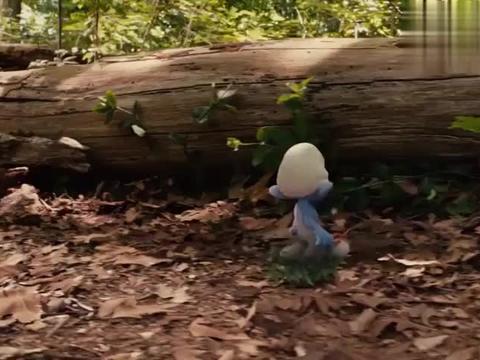 蓝精灵:格格巫找到结界了,他好开心呀,他可以抓蓝精灵了