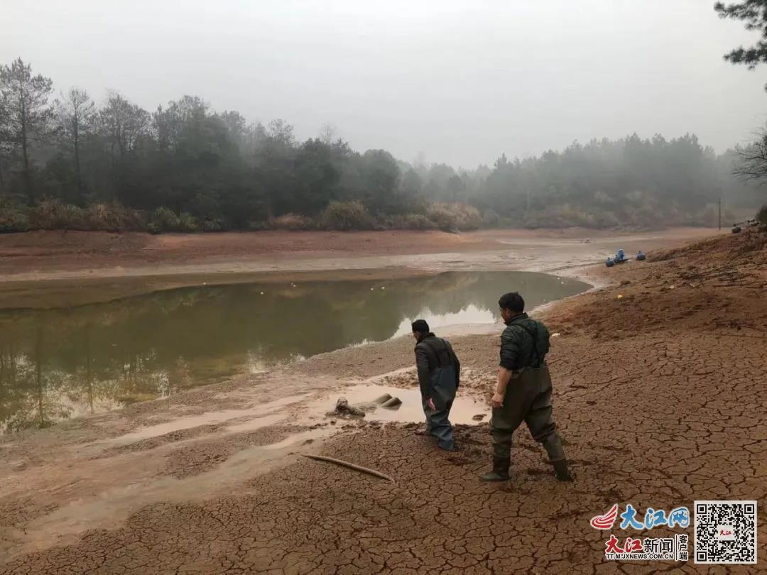 泰和一女子不慎掉入泥潭一整夜 幸得民警和村民及时发现救出(图)