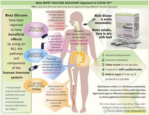 来自日本的Nichi葡聚糖膳食补剂有望用作COVID-19疫苗佐剂