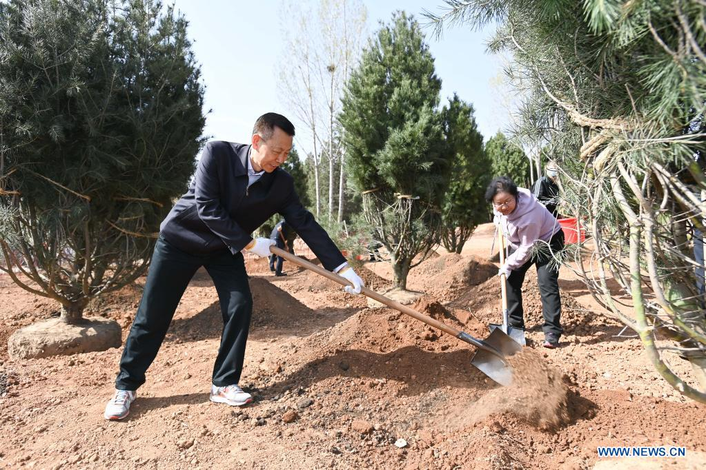 Chen Xiaoguang, vice chairman of the National Committee of the Chinese People's Political Consultative Conference (CPPCC), plants a tree during a voluntary tree-planting activity at the Xishan National Forest Park in Haidian District of Beijing, capital of China, March 30, 2021. Chinese political advisors on Tuesday attended a voluntary tree-planting activity in Beijing. The event was attended by vice chairpersons of the CPPCC National Committee and more than 100 staff members of the working organs of the CPPCC National Committee. (Xinhua/Li Xiang)