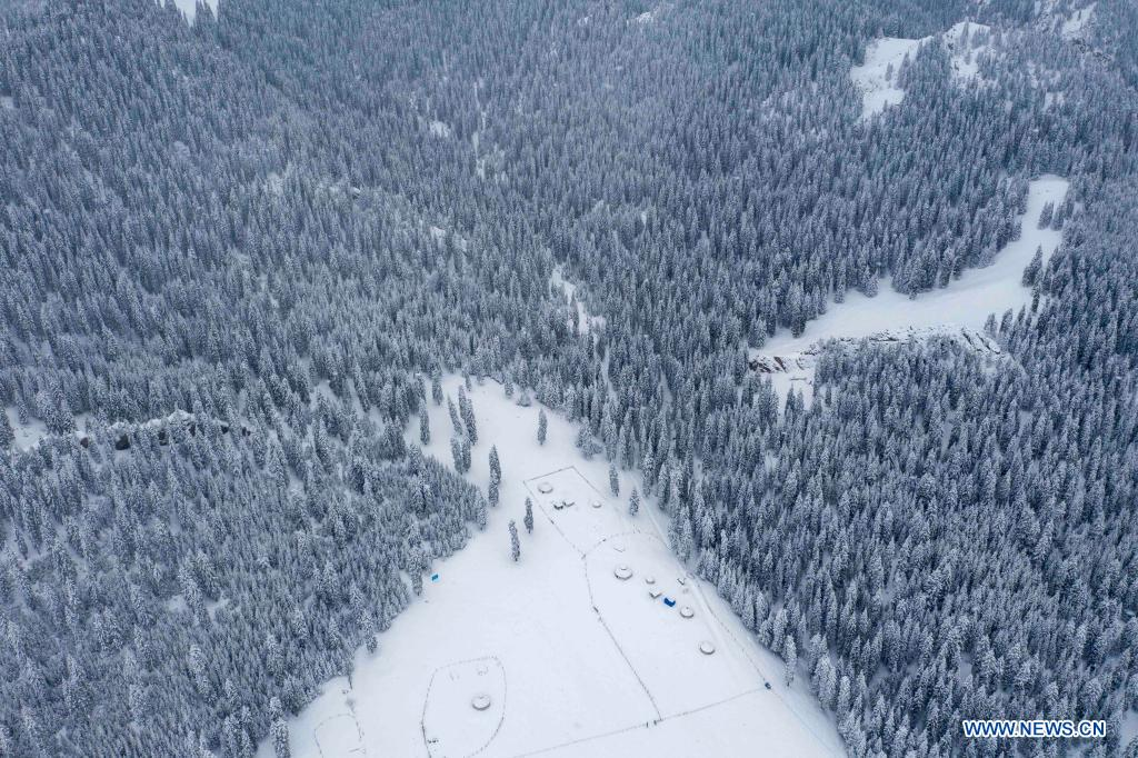 Aerial photo shows the snow-covered forest of Tianshan Mountains in Shawan City, northwest China's Xinjiang Uygur Autonomous Region, March 30, 2021. (Xinhua/Hu Huhu)