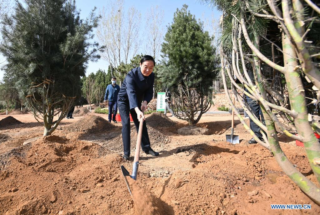 Liu Qibao, vice chairman of the National Committee of the Chinese People's Political Consultative Conference (CPPCC), plants a tree during a voluntary tree-planting activity at the Xishan National Forest Park in Haidian District of Beijing, capital of China, March 30, 2021. Chinese political advisors on Tuesday attended a voluntary tree-planting activity in Beijing. The event was attended by vice chairpersons of the CPPCC National Committee and more than 100 staff members of the working organs of the CPPCC National Committee. (Xinhua/Li Xiang)