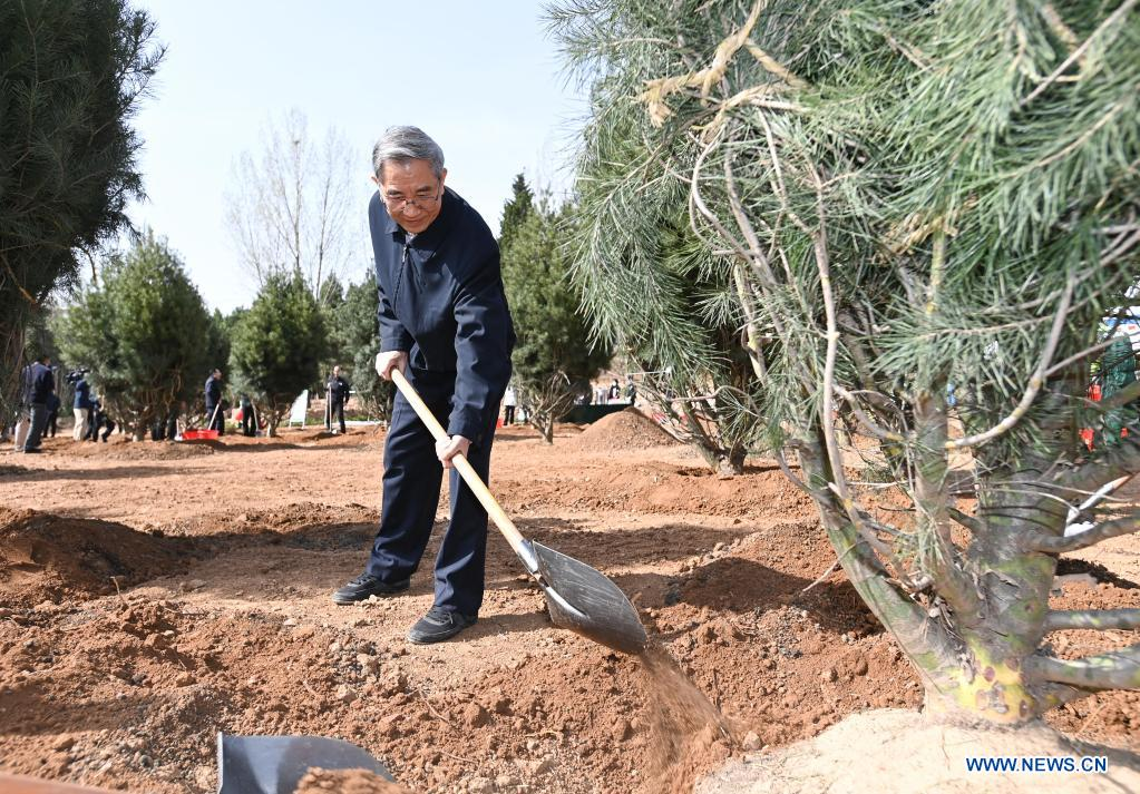 Ma Biao, vice chairman of the National Committee of the Chinese People's Political Consultative Conference (CPPCC), plants a tree during a voluntary tree-planting activity at the Xishan National Forest Park in Haidian District of Beijing, capital of China, March 30, 2021. Chinese political advisors on Tuesday attended a voluntary tree-planting activity in Beijing. The event was attended by vice chairpersons of the CPPCC National Committee and more than 100 staff members of the working organs of the CPPCC National Committee. (Xinhua/Li Xiang)