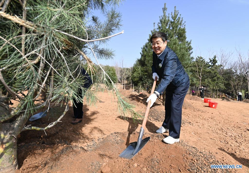 Bater, vice chairman of the National Committee of the Chinese People's Political Consultative Conference (CPPCC), plants a tree during a voluntary tree-planting activity at the Xishan National Forest Park in Haidian District of Beijing, capital of China, March 30, 2021. Chinese political advisors on Tuesday attended a voluntary tree-planting activity in Beijing. The event was attended by vice chairpersons of the CPPCC National Committee and more than 100 staff members of the working organs of the CPPCC National Committee. (Xinhua/Li Xiang)