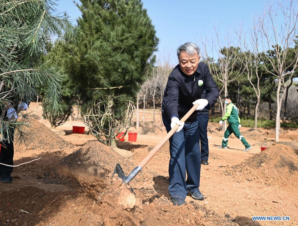 Yang Chuantang, vice chairman of the National Committee of the Chinese People's Political Consultative Conference (CPPCC), plants a tree during a voluntary tree-planting activity at the Xishan National Forest Park in Haidian District of Beijing, capital of China, March 30, 2021. Chinese political advisors on Tuesday attended a voluntary tree-planting activity in Beijing. The event was attended by vice chairpersons of the CPPCC National Committee and more than 100 staff members of the working organs of the CPPCC National Committee. (Xinhua/Li Xiang)