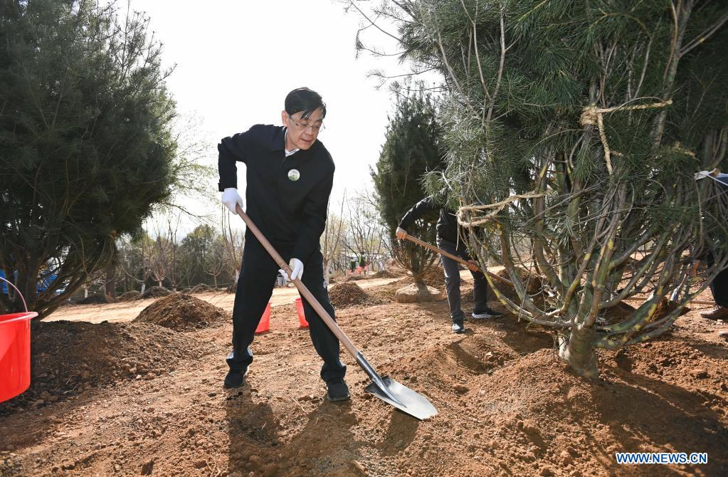 He Wei, vice chairman of the National Committee of the Chinese People's Political Consultative Conference (CPPCC), plants a tree during a voluntary tree-planting activity at the Xishan National Forest Park in Haidian District of Beijing, capital of China, March 30, 2021. Chinese political advisors on Tuesday attended a voluntary tree-planting activity in Beijing. The event was attended by vice chairpersons of the CPPCC National Committee and more than 100 staff members of the working organs of the CPPCC National Committee. (Xinhua/Li Xiang)