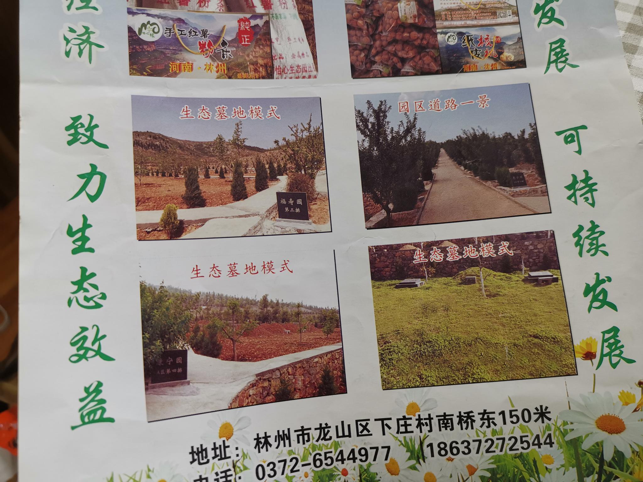 林州市怡心生态园的宣传页显示,园区内售卖公墓。新京报记者程亚龙摄