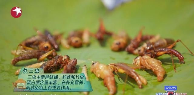 《极限挑战》邓伦为什么不敢吃虫子?特色美食炸三虫吓死邓伦