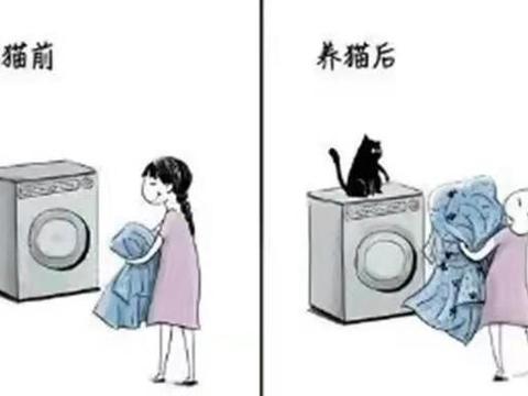 画师分享养猫前后的变化图,猫奴的内心是痛苦的,同时是快乐的