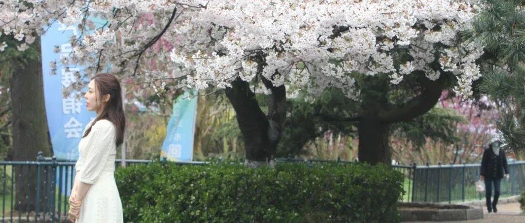 青岛近郊游、自驾游攻略来了!附长假5天天气