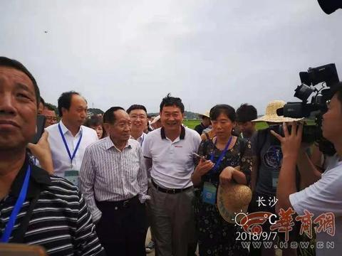袁隆平与汉中大米的故事:超级稻示范亩产超800公斤